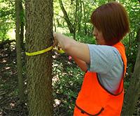Tree Survey: Point-Centered Quarter Sampling Method thumbnail