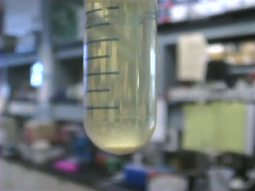 Plasmid Purification thumbnail
