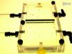 High-Resolution Video Tracking of Locomotion in Adult Drosophila Melanogaster thumbnail