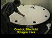 A Video Demonstration of Preserved Piloting by Scent Tracking but Impaired Dead Reckoning After Fimbria-Fornix Lesions in the Rat thumbnail