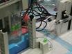 Denaturing Gradient Gel Electrophoresis (DGGE) thumbnail