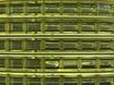 使用基因脉冲MXcell电穿孔系统主细胞的转染效率高 thumbnail