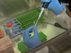 El análisis de ADN de doble cadena Break (OSD) de reparación en células de mamífero thumbnail