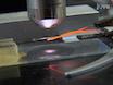 ザリガニの脚の伸筋に高と低出力NMJsの生理的録音 thumbnail