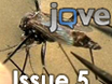JoVE 5th Issue thumbnail