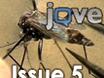 JoVE 5th Issue thumbnail