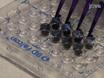 酶标菜生物膜形成实验 thumbnail