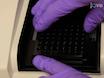 Hitachi F-7000 प्रतिदीप्ति स्पेक्ट्रोफोटोमीटर और PicoGreen डाई का उपयोग dsDNA की मात्रा का ठहराव thumbnail