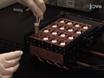 Multiple-mouse Neuroanatomical Magnetic Resonance Imaging thumbnail