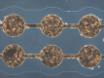 在光学透明的铟锡氧化物电极的图案细胞 thumbnail