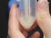 ठोस आधारित प्लेट आहार प्रतिबंध में<em> Caenorhabditis एलिगेंस</em thumbnail