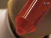 İzleme Araştırmaları Qdot nanokristaller murin Kemik İliği-türevli dendritik hücrelerin üretilmesi ve Etiketleme thumbnail