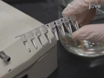 Hart Dissection in larvale, jeugdige en volwassen zebravis,<em> Danio rerio</em thumbnail