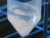 Formulation of Diblock Polymeric Nanoparticles through Nanoprecipitation Technique thumbnail