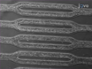 Endothelialized Microfluidics for Studying Microvascular Interactions in Hematologic Diseases thumbnail