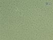 Capsular Serotyping of <em>Streptococcus pneumoniae</em> Using the Quellung Reaction thumbnail