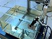 Karakterisering van recombinatie Effecten in een Liquid ionisatiekamer gebruikt voor de dosimetrie van een radiochirurgische Accelerator thumbnail