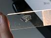 מיפוי מבוסס AFM של תכונות אלסטיות של קירות תא: ברקמות, נייד, והחלטות subcellular thumbnail
