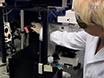 Analyzing the Movement of the Nauplius '<em>Artemia salina</em>' by Optical Tracking of Plasmonic Nanoparticles thumbnail