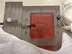 La culture de la souris cardiaque Vannes dans le système de culture de tissus Miniature thumbnail