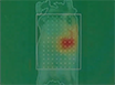 Hybrid µCT-FMT imaging and image analysis thumbnail