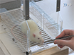 Acquisition of a High-precision Skilled Forelimb Reaching Task in Rats thumbnail