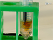 تخليق البروتين Bioconjugates<em&gt; عبر</em&gt; سيستين-maleimide الكيمياء thumbnail
