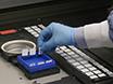Generación de dos colores con antígeno microarrays para la detección simultánea de autoanticuerpos IgG e IgM thumbnail