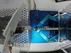 Investigating Motor Skill Learning Processes with a Robotic Manipulandum thumbnail