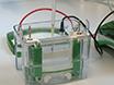 Lipid Droplet Isolation for Quantitative Mass Spectrometry Analysis thumbnail