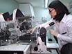 Avanzadas técnicas de Microscopía Confocal para estudiar las interacciones proteína-proteína y cinética en las lesiones del ADN thumbnail