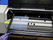 Horizontal Gel Electrophoresis for Enhanced Detection of Protein-RNA Complexes thumbnail