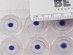 Using the Dot Assay to Analyze Migration of Cell Sheets thumbnail