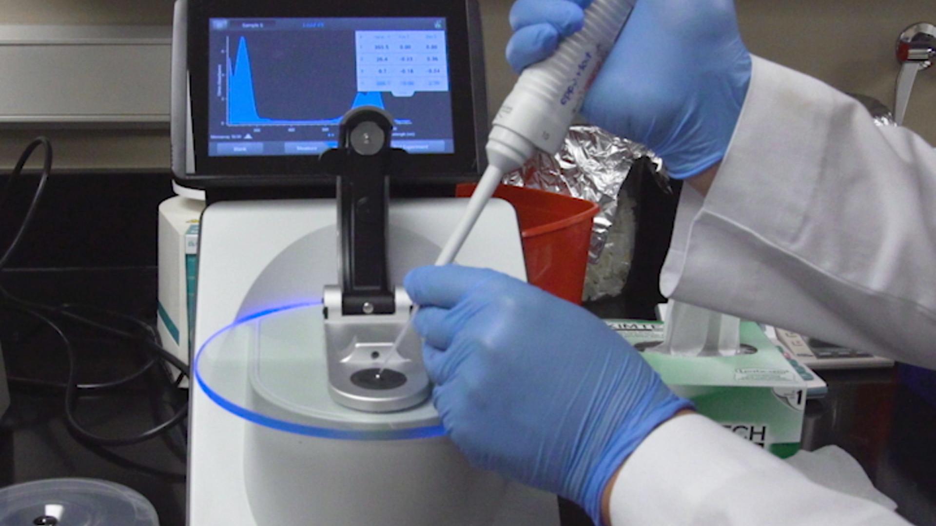 An Array-based Comparative Genomic Hybridization Platform for Efficient Detection of Copy Number Variations in Fast Neutron-induced <em>Medicago truncatula</em> Mutants thumbnail