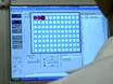 Snabb Genotypning av Mouse vävnad med hjälp av Sigmas Extrahera-N-Amp Tissue PCR kit thumbnail