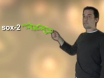Sox-2 Zorla İfade yoluyla MEFS iPS Hücreler oluşturma, Eki 4, c-Myc ve Klf4 thumbnail