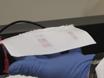 Analyse immunoblot thumbnail